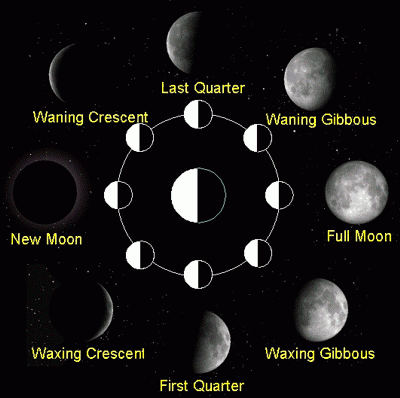 pictures of moon phases in order. moon phases in order.