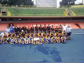 Campeonato Estadual