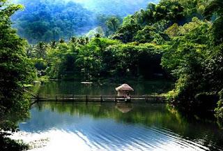 Bird Kerala Sanctuary Thattekkad