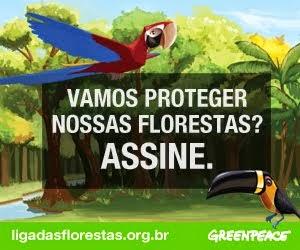 Liga das florestas