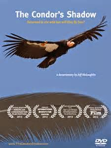 an analysis of david s wilcoves book the condors show After terborgh's gloomy assessment, one can almost read the condor's shadow, david wilcove's account of american wildlife conservation, as a success story it's not that he presents a happy situation.