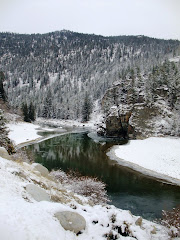 Similkameen River 12/11