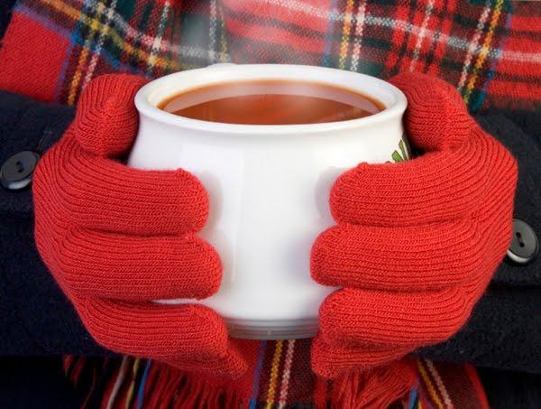 Alimentação de Inverno