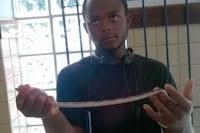 Jovem utiliza cobra para realizar assaltos na Bahia