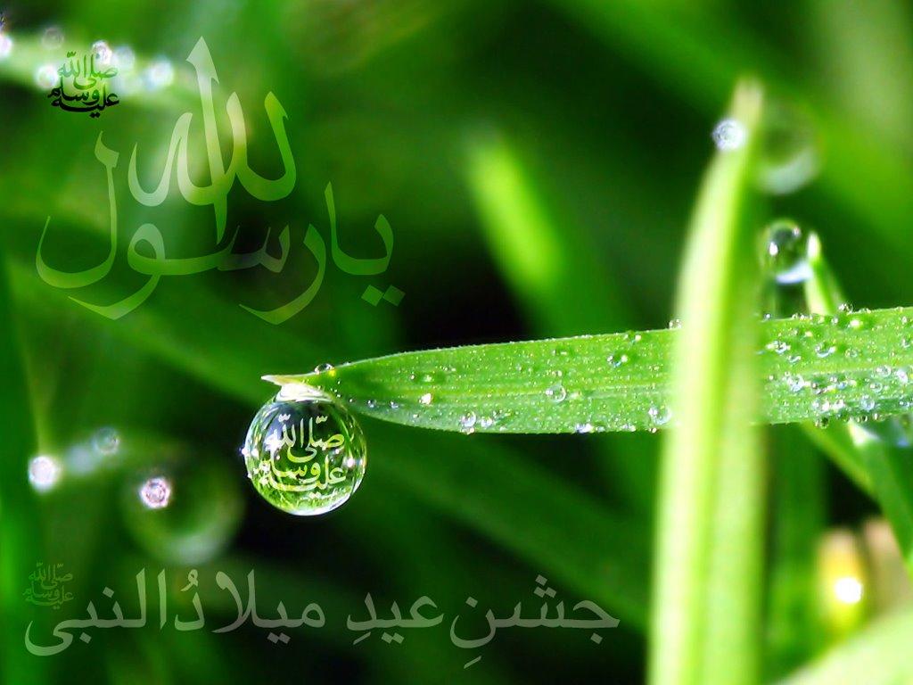 http://4.bp.blogspot.com/-_mmtqEPq6Gk/TcJlYUpD_nI/AAAAAAAADc8/qMwMPwmEx9o/s1600/best-islamic-wallpaper.jpg