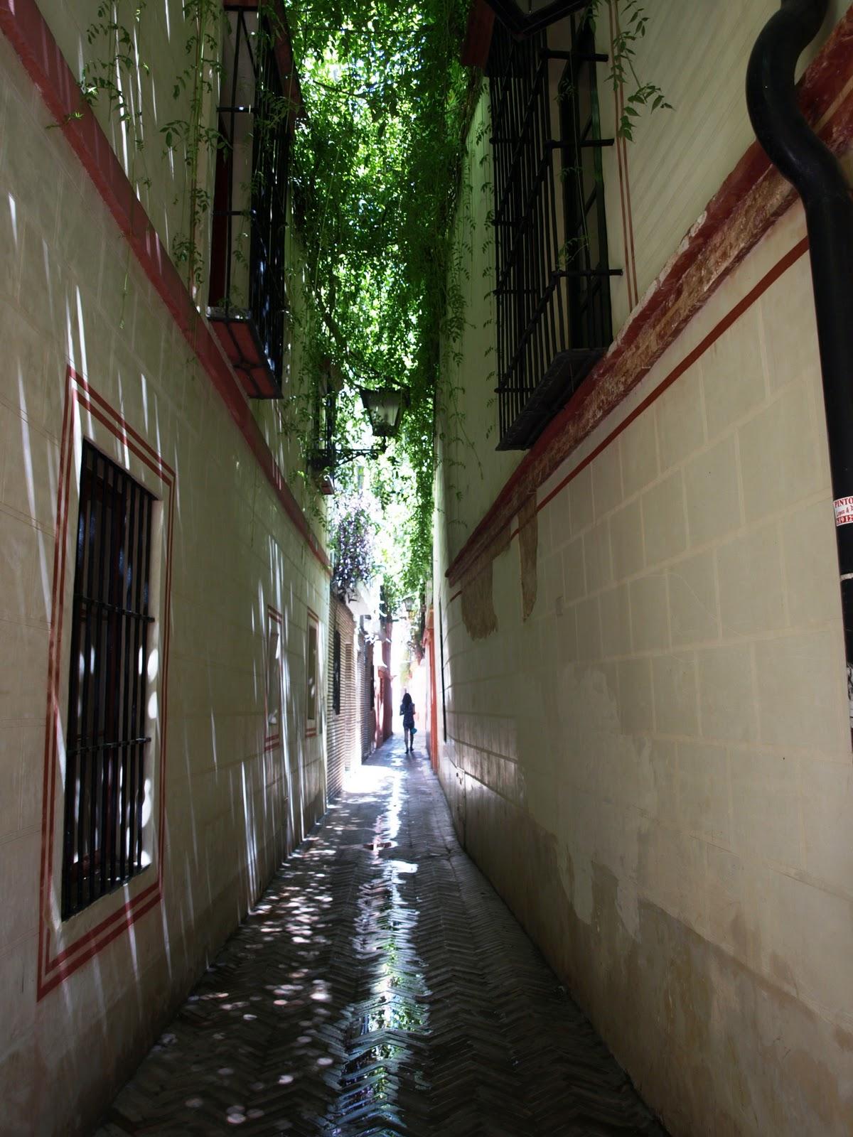 Pinterest the world s catalog of ideas - Calle correduria sevilla ...
