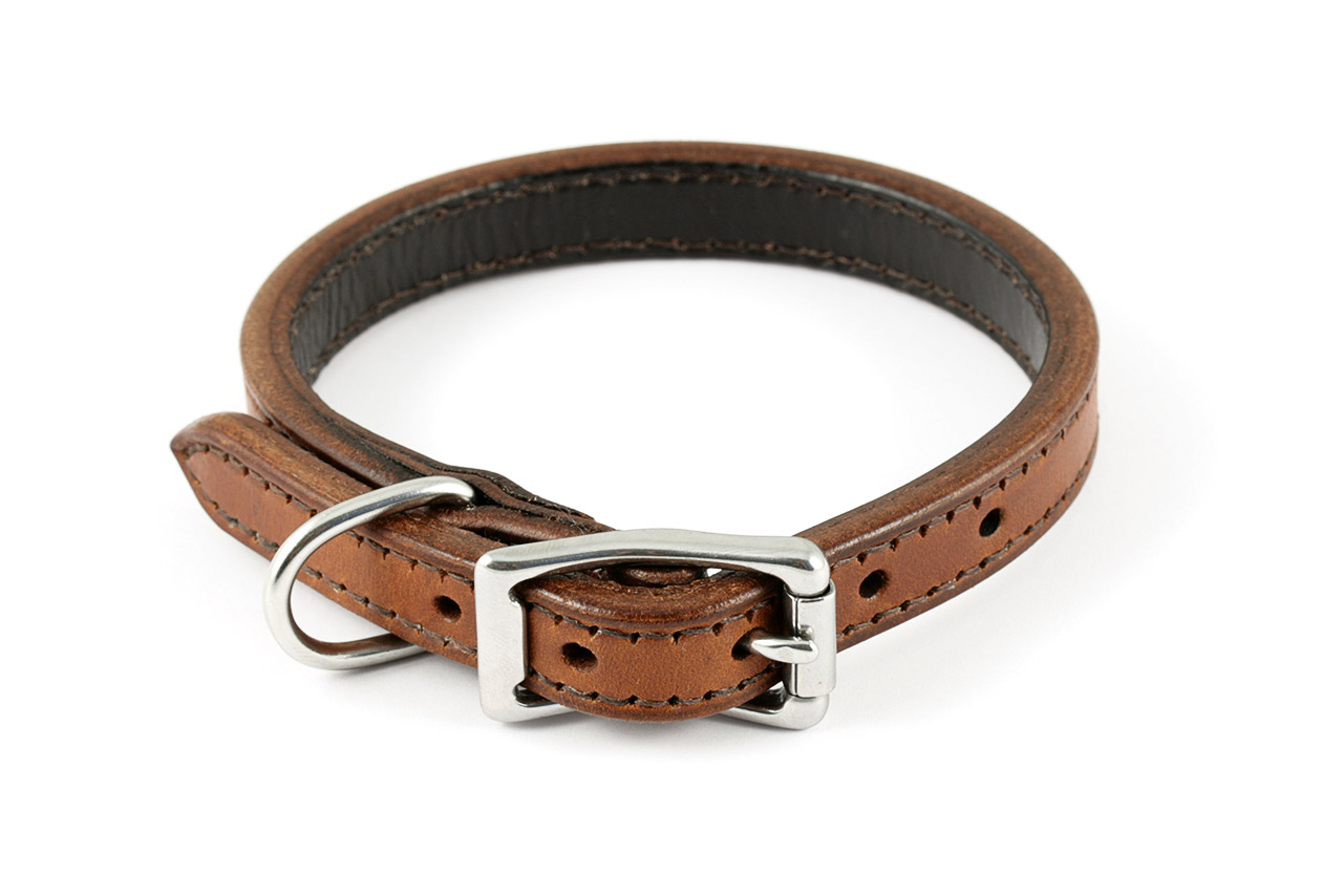Image Result For Leashes For Dogs