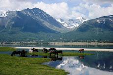 Монголын сайхан орон