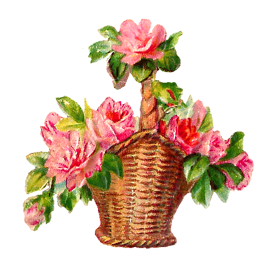 Flower Baskets Photos : Antique images spring flowers red pink rose basket