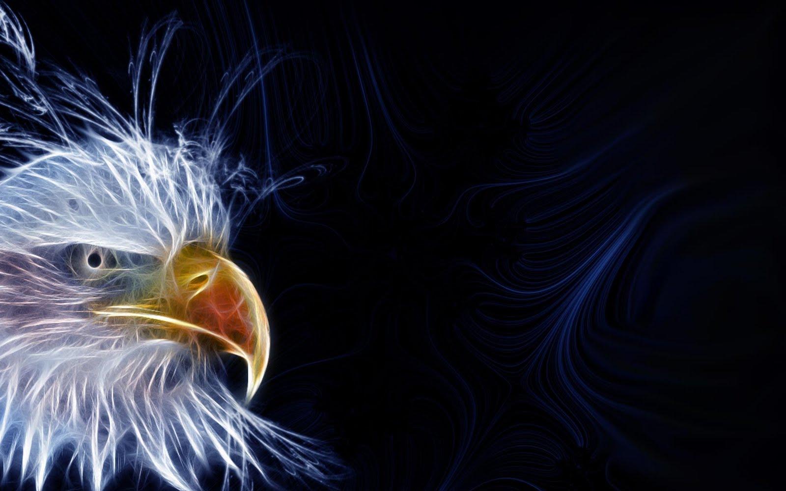 http://4.bp.blogspot.com/-_nRS8HrBTpI/TcW4xd-joBI/AAAAAAAAACw/Sox6aAnk5Yw/s1600/Bald_eagle_head.jpg