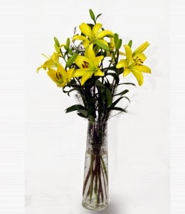 Top Yellow Lilies delivery in Bolivia