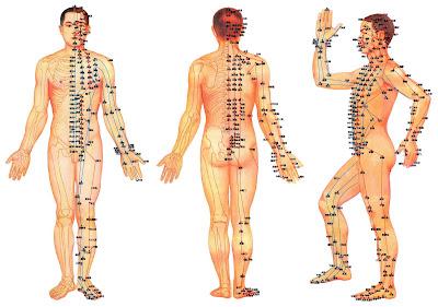 meridiany w ciele