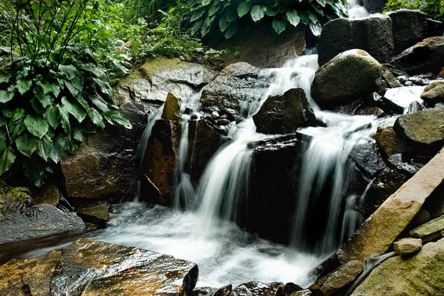 Aquascape Your Landscape: Rustic Waterfalls Add Drama to a Landscape