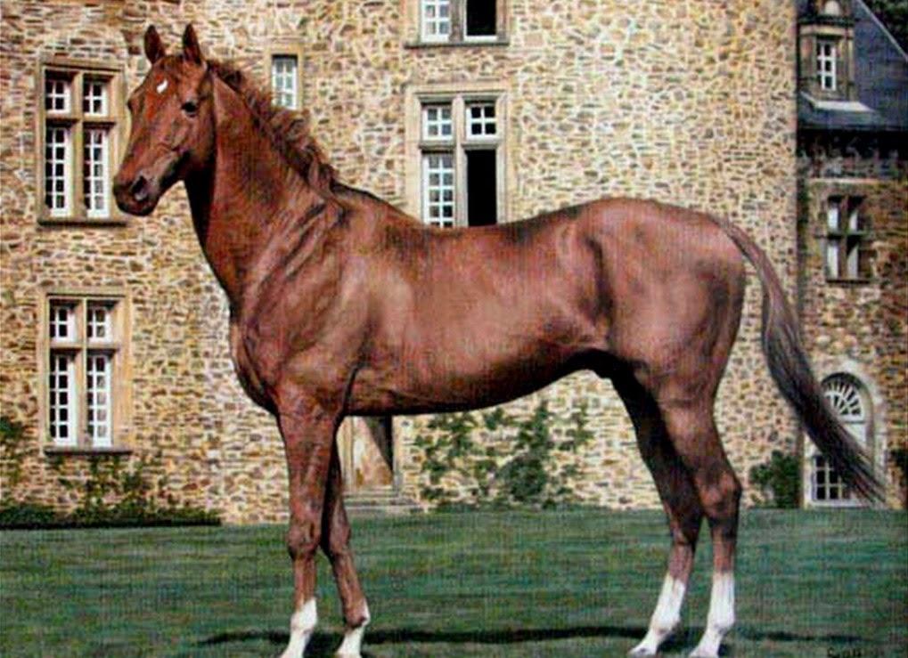 caballos-en-paisajes-realistas