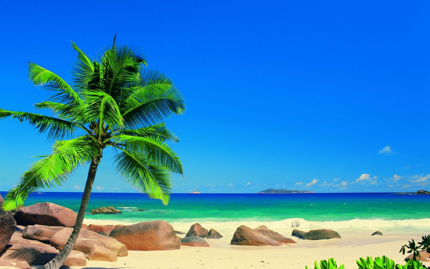 Download Exotic Paradise HD Wallpapers