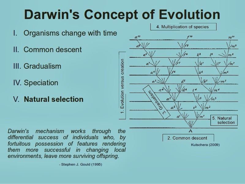 Science Reason and Logic Rule Evolution