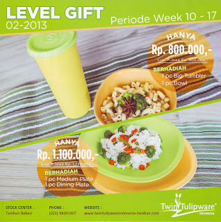 Level Gift Tulipware | Maret - April 2013