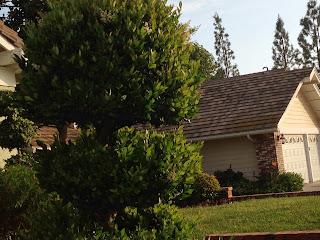 Comfortable Orange County Home in San Juan Capistrano, CA