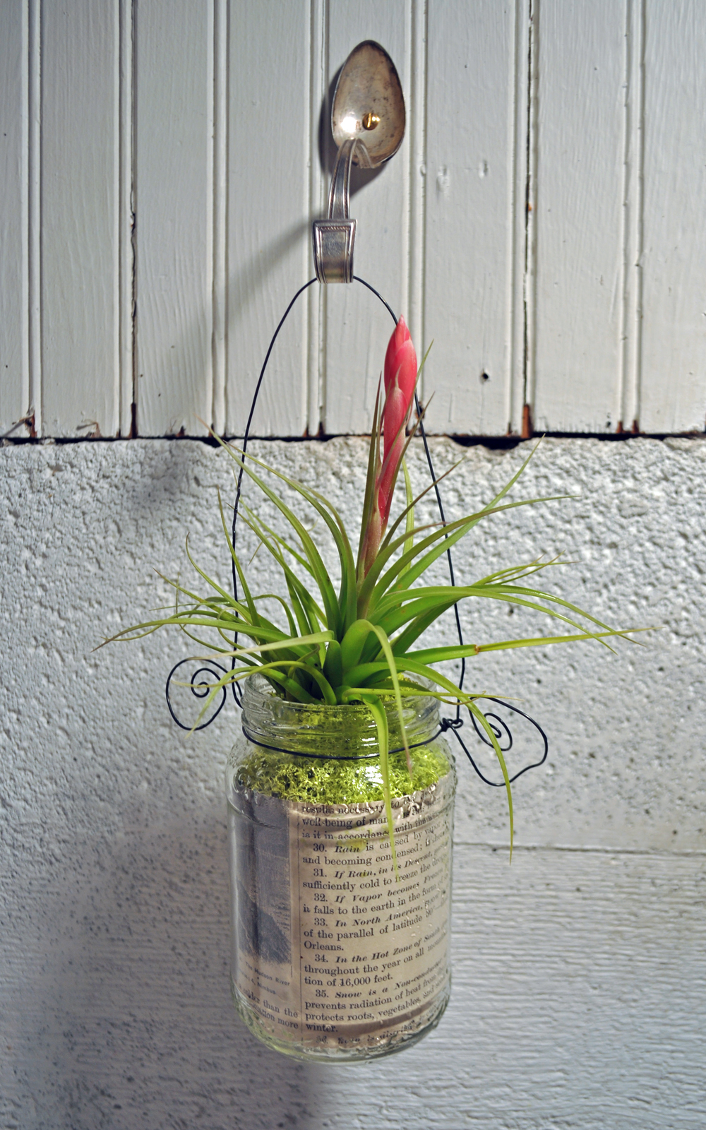 One Of The Latest Workshops At Hutch Repurposes A Glass Jar And An Old  Spoon Creating A Whimsical Hanging Planter For A Fun Plant. I Chose To Use Air  Plants ...