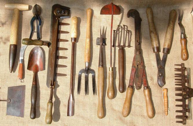 The gardening apprentice teacher sues school over for Gardening tools for schools