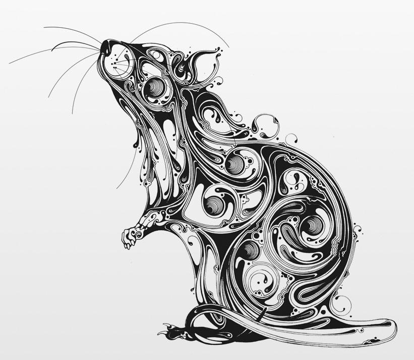Evil Rat Drawing