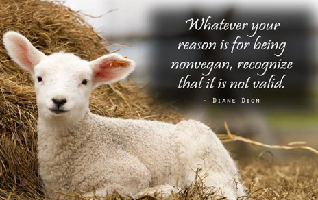 """Whatever your reason is for being nonvegan, recognize that it is not valid."""