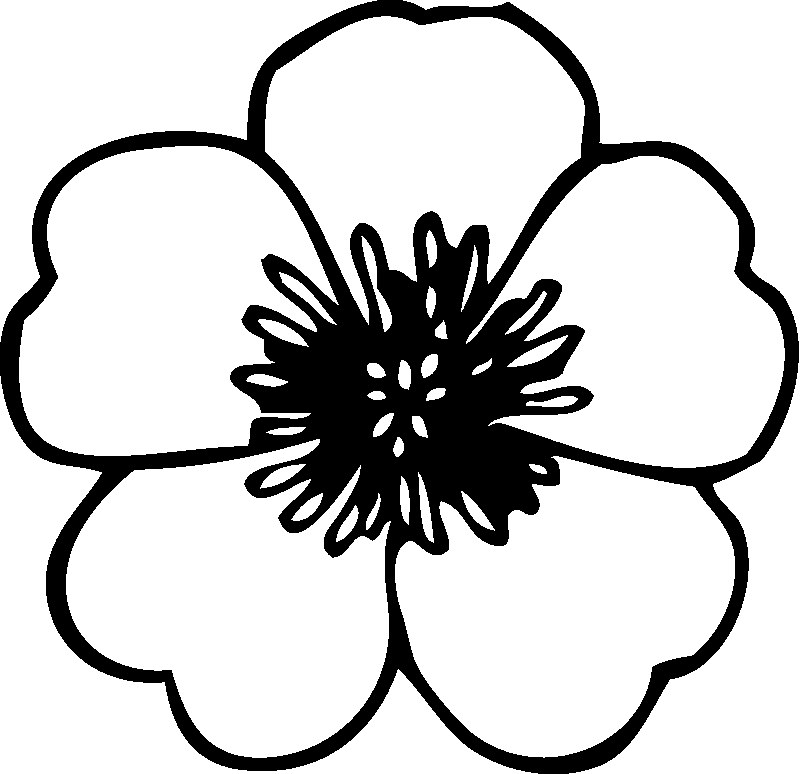 coloring pages for kids flowers flower coloring pages for kids