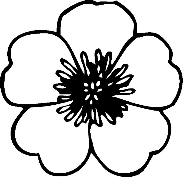 White Hawaiian Flowers Clip Art