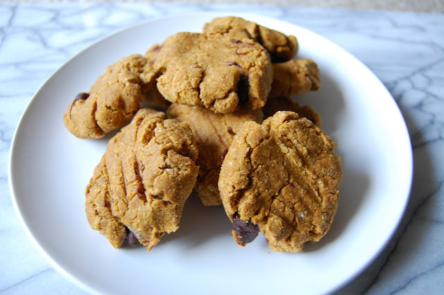Paleo Protein Pumpkin Cookies