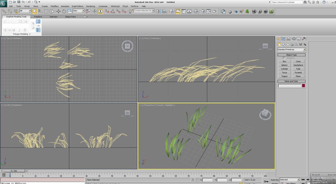grassclumps_1.jpg