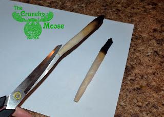 Ear Candling - thecrunchymoose.com