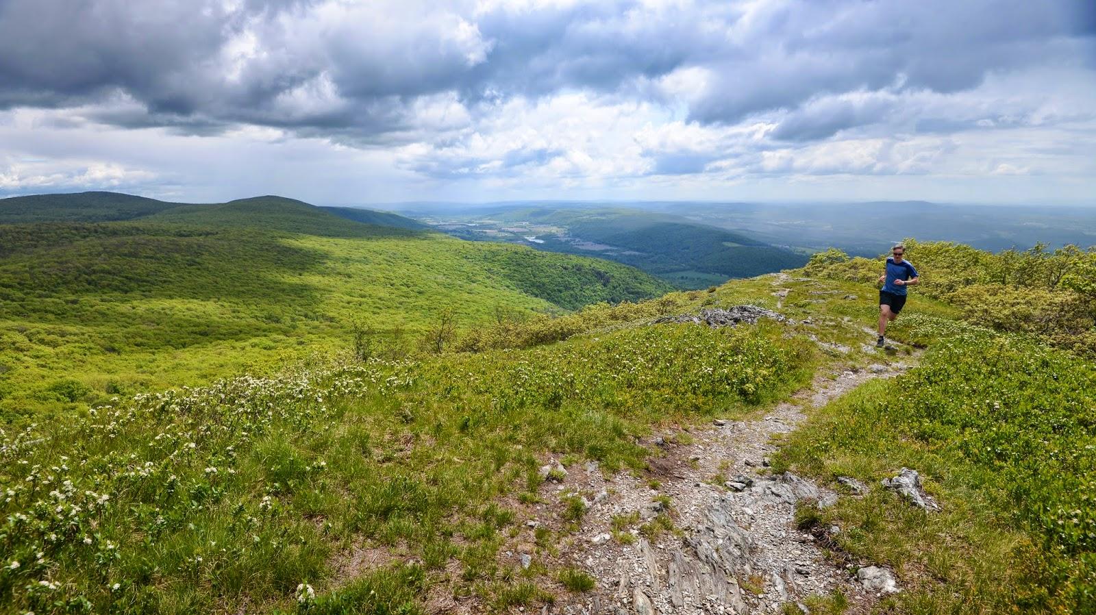 trail on Alander Mountain in southwestern MA