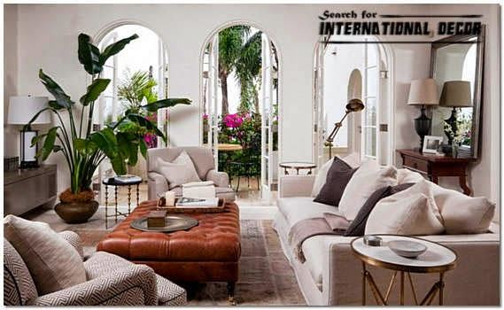 decorative indoor plants in the interior of apartments and houses