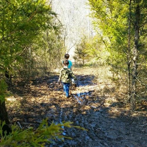 Mt. Kessler Trail Fayetteville, AR
