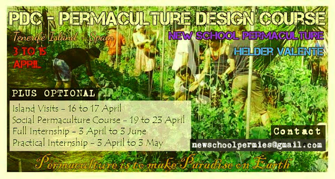 PDC course April and Spring Permaculture Intensive Internship program