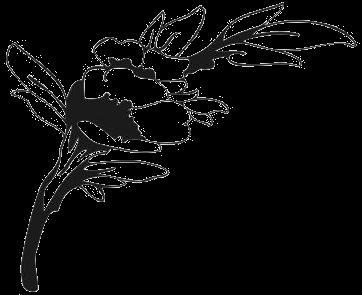 Ozdoby Choinkowe Duka Boze Narodzenie 2012 we Dwoje Galerie Dom Ogrod W rza Ciekawe Pomysly Galeria Zdjecie 10050195 19 likewise Cennik together with Hit Naklejki Napisy Na Sciane Cytaty Scienne 100cm I6556955646 as well Motywy Graficzne furthermore Zaproszenia 20 C5 9Blubne doda i WYDRUK 20DODA OWEJ 20GRAFIKI ZDJ C4 98CIA 20CZ B 20W 201 20SZT. on ozdoby weselne at