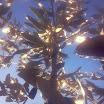 Φωτογραφίες από τη Μαργαρίτα Αντωνίου: Ηλιαχτίδες της χαράς