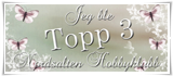 Topp 3 Nordsalten hobbyklubb