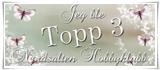 Topp 3 Nordsalten hobbyklubb