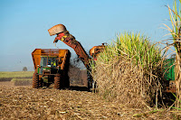 Brazil has hampered production of ethanol from sugar cane by pegging its price to petrol. (Image Credit: Jonathan Wilkins via Wikimedia Commons) Click to Enlarge.