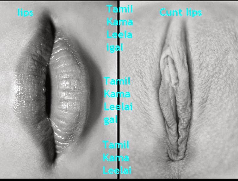 рисованные половые губы фото