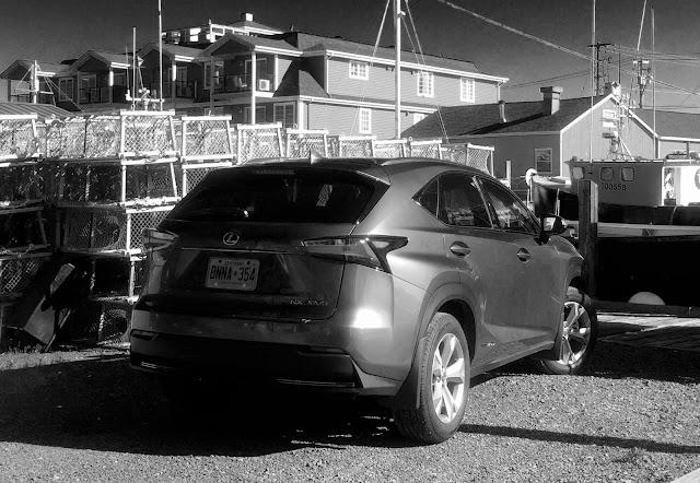 2015 Lexus NX300h rear