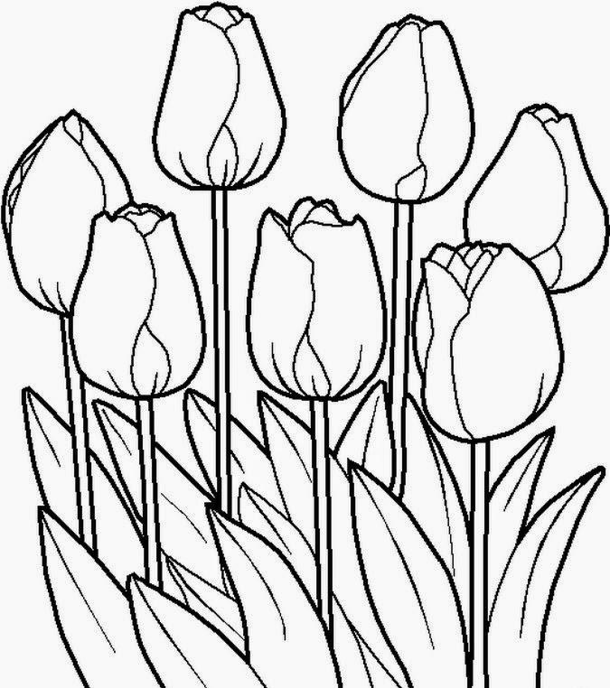 Perfecto Páginas Para Colorear De Flores Para Niños Imagen - Ideas ...