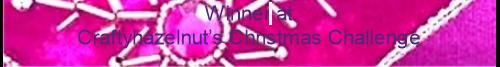 Craftyhazelnuts Christmas Challenge