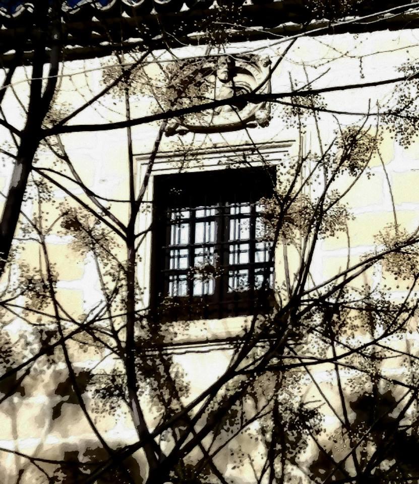 Vbeda; Patrimonio del Abandono. ÚBEDA; EL MAL ESTADO DEL CASCO HISTÓRICO