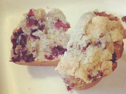 Crumb Topping Blueberry Muffin Recipe