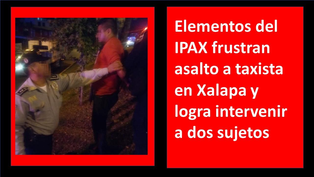 Elementos del IPAX