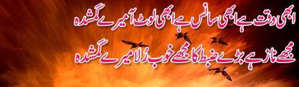 Shayari on Friendship in Urdu Shayari in Urdu Urdu Love