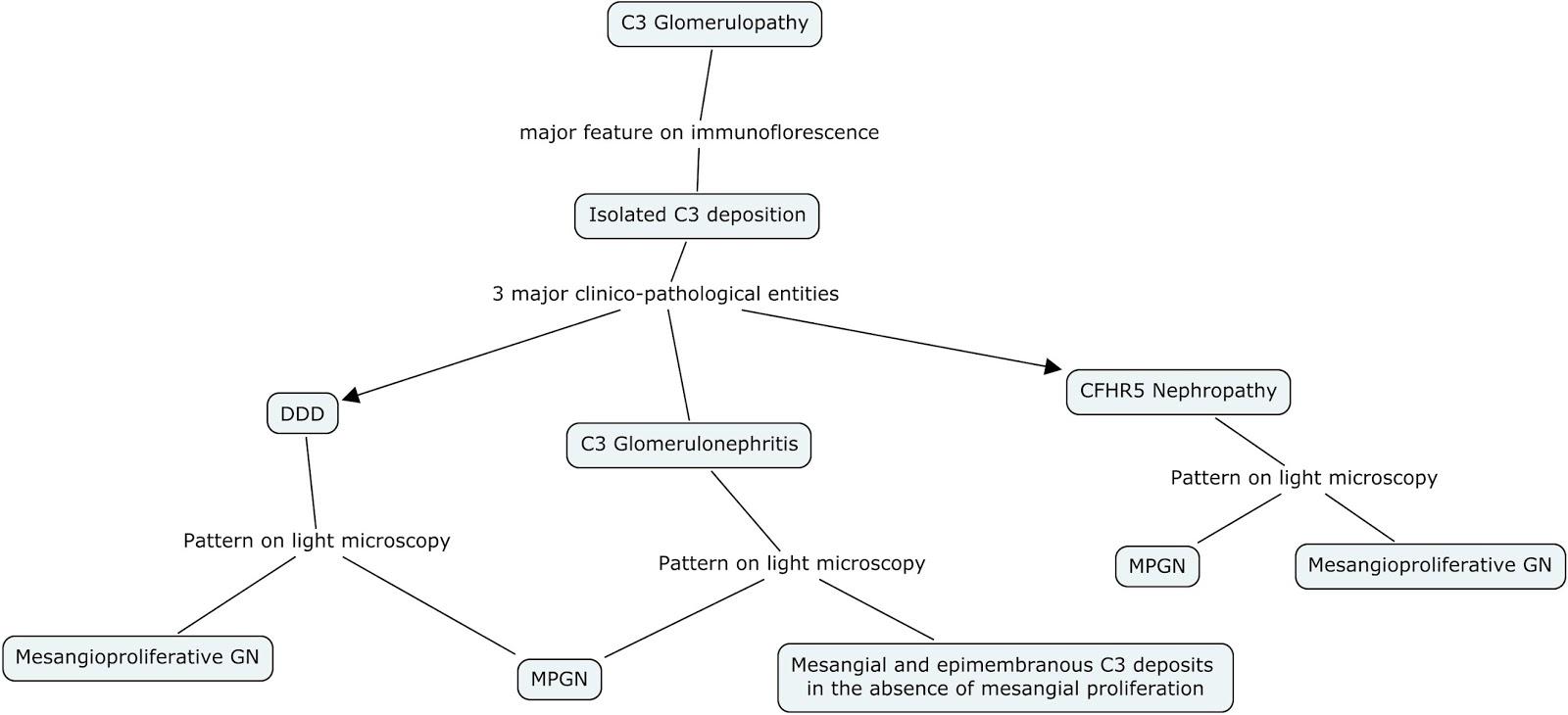 Concept Map Com.Nephron Power Concept Map C3 Glomerulopathy