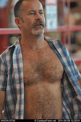 gay mature - hairy chested - mature blog